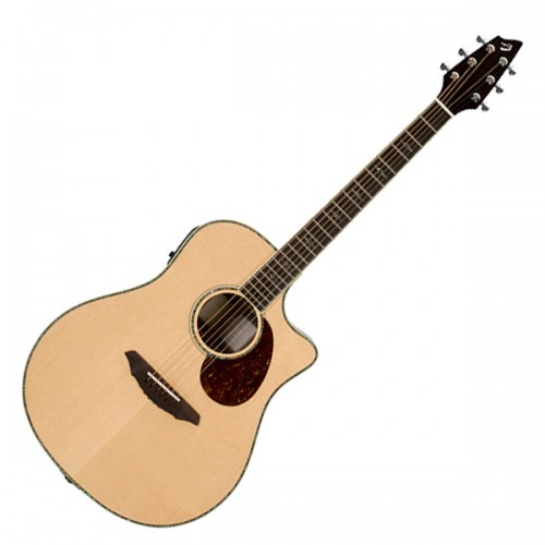 Breedlove Stage d25